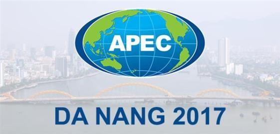 ダナン、APEC2017の準備作業を促進 - ảnh 1