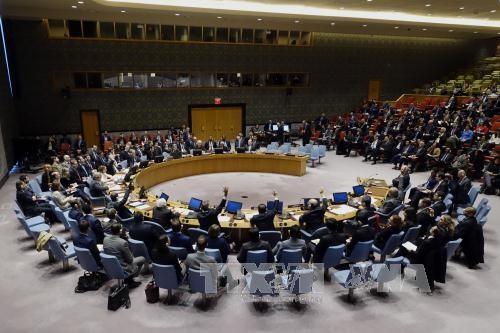 ロシアと中国、7日間のシリア停戦に拒否権=国連安保理 - ảnh 1