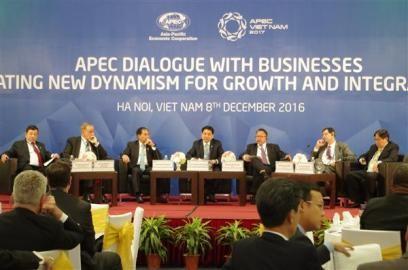 APEC企業対話 成長と結合の新しい原動力を - ảnh 1