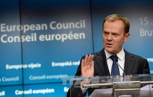 EU、対ロ経済制裁の半年延長を正式決定  - ảnh 1