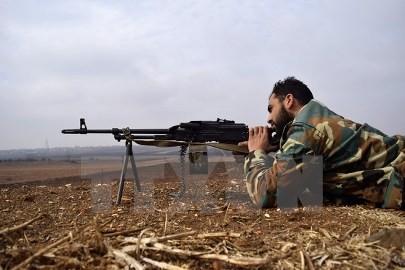 トルコとロシア、シリア停戦案を策定=トルコ外相 - ảnh 1