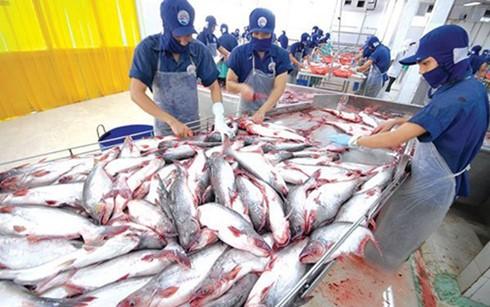 水産物輸出、引き続き増加 - ảnh 1