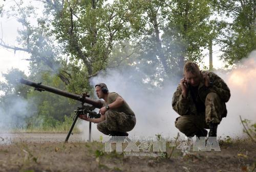 ウクライナ東部、戦闘続く - ảnh 1