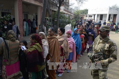 インド、地方選挙の投票始まる - ảnh 1