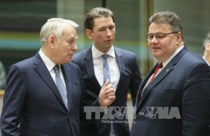 EU外相理事会、対ロシア制裁堅持を表明 - ảnh 1