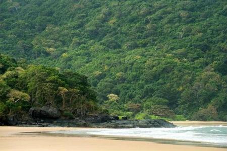 ベトナムのコンダオ島 世界で最も魅力的な島として選出 - ảnh 1
