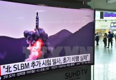 朝鮮民主主義人民共和国の核問題でむち振るう中国、外交努力も継続 - ảnh 1