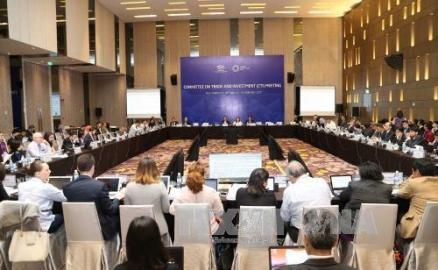 APEC2017、10日目の議事日程に入る - ảnh 1