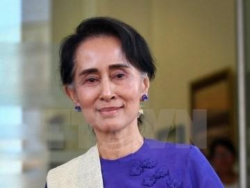 ミャンマー補選、スー・チー氏のNLDが半数近い議席獲得 - ảnh 1