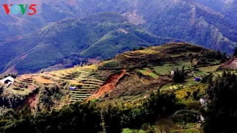 ベトナム経済の前向きな兆し - ảnh 1
