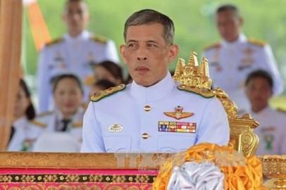 新憲法、4月6日公布、宮殿でセレモニー実施 - ảnh 1