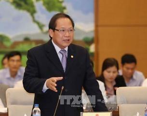 ベトナム法律と国際通例に従って情報を管理 - ảnh 1