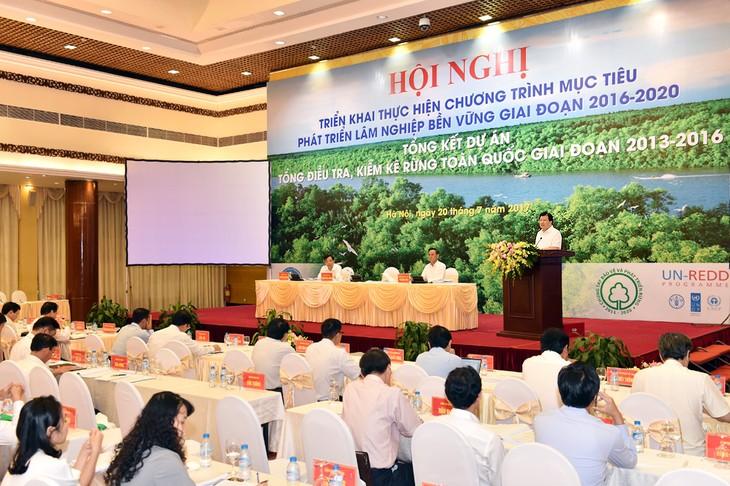 林業部門、持続可能な開発に向けた3目標達成を確保 - ảnh 1