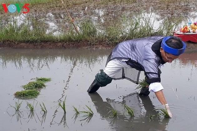 クアンニン省クアンイエン町の農耕祭り - ảnh 2