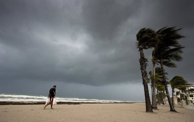 ハリケーン「イルマ」が米フロリダ州に上陸 - ảnh 1