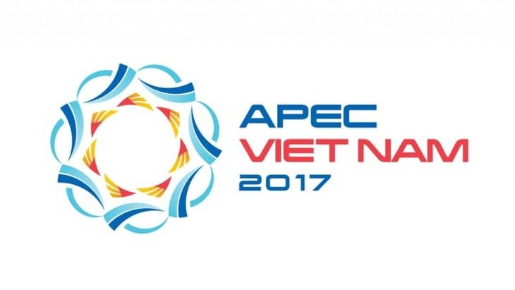 APEC2017、インドネシアがベトナムを支援 - ảnh 1