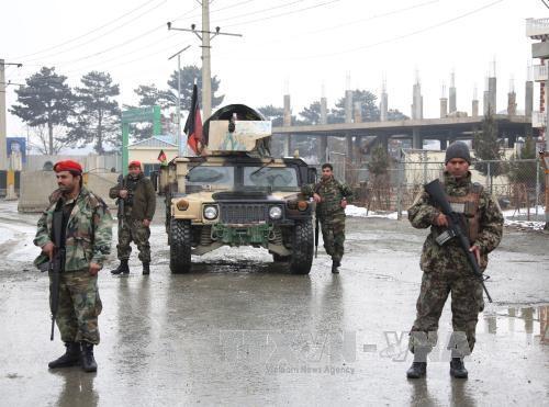 アフガンで治安悪化 解決策見いだせず - ảnh 2