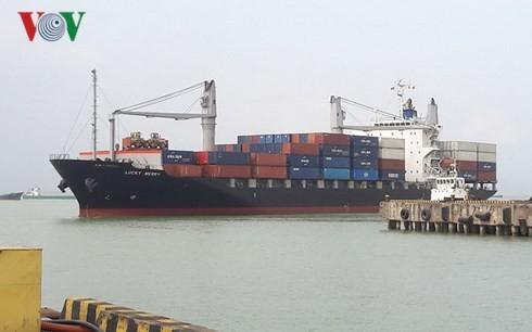 ダナン港、年始最初のコンテナ船を取り扱う - ảnh 1