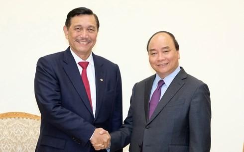 フック首相、インドネシア海洋担当調整大臣と会見 - ảnh 1