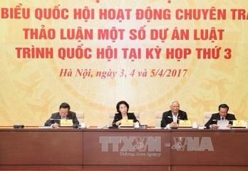専任議員会議、特別行政経済区法案を討議 - ảnh 1
