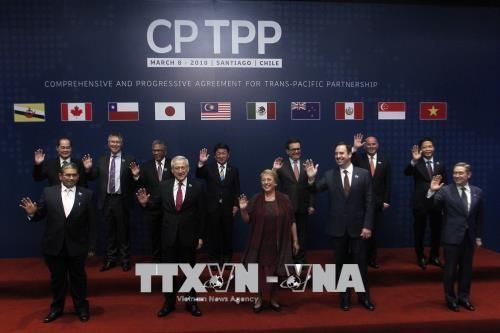 メキシコ議会上院、米国抜きの新TPPを承認 - ảnh 1
