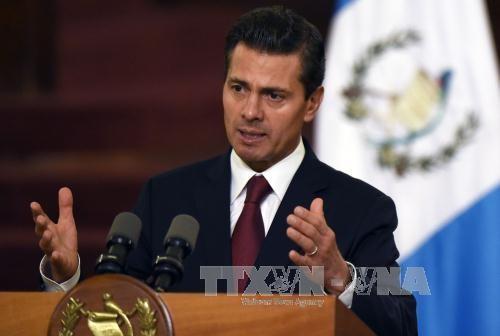 メキシコ大統領 ベトナムとの全面的関係強化を確認 - ảnh 1