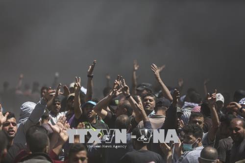 国際刑事裁、ガザでの発砲を注視 イスラエルに警告 - ảnh 1