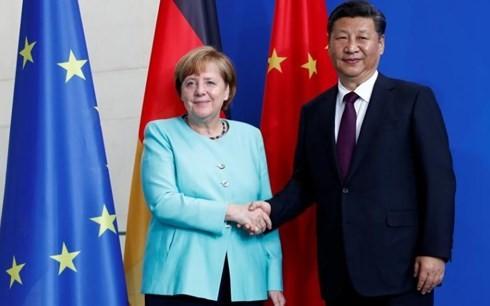 中国とドイツの首脳、核合意の維持を強調 - ảnh 1