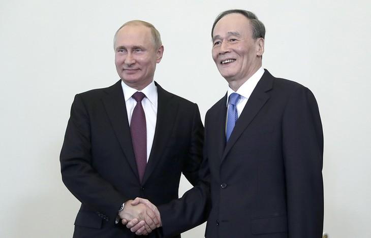 中国 王岐山国家副主席が初外遊 プーチン大統領と会談 - ảnh 1