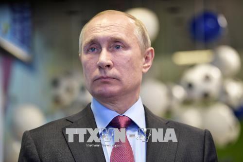 プーチン大統領、ロシアによるマレーシア航空MH17便の撃墜を否定 - ảnh 1