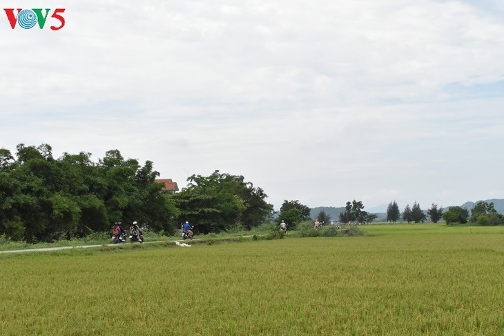 タイントオイチャン村の古き良き空間 - ảnh 1