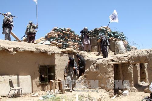 タリバンが戦闘再開宣言 アフガニスタンの一時停戦終了 - ảnh 1