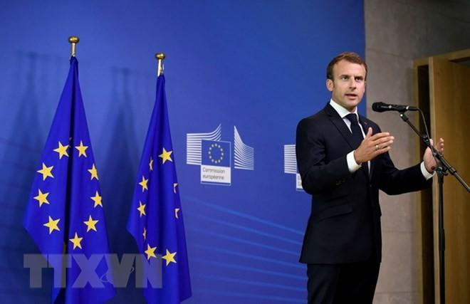EU首脳、移民受け入れめぐり臨時会議 主張の隔たり埋まらず - ảnh 1