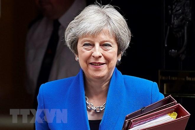 メイ英首相、関税同盟めぐる親EU派攻勢かわす 下院で修正案否決 - ảnh 1