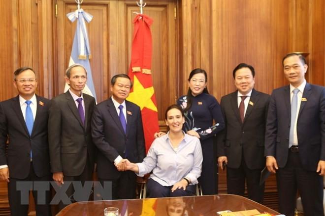 ティ国会副議長、アルゼンチンを訪問 - ảnh 1