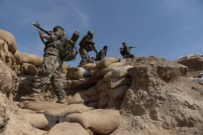 アフガン大統領、タリバンに3カ月停戦呼びかけ  - ảnh 1