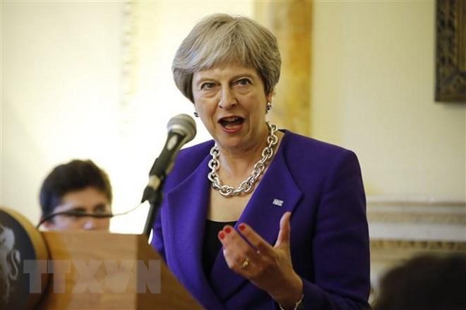 英与党のEU懐疑派、アイルランド国境の解決策提示 - ảnh 1