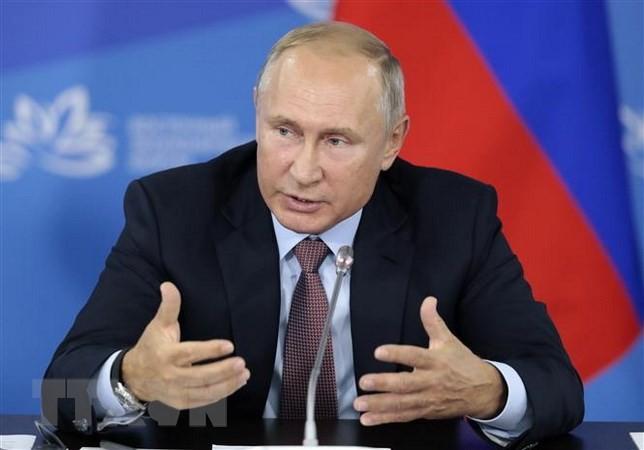 シリア軍のロシア軍機撃墜は偶発的=プーチン大統領 - ảnh 1