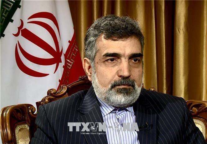 イラン原子力庁、「イランとロシアのエネルギー分野の協力は継続している」 - ảnh 1