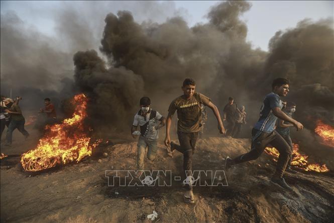 ガザ地区北部で、イスラエル軍の銃撃により、パレスチナ人少年1名が殉教 - ảnh 1