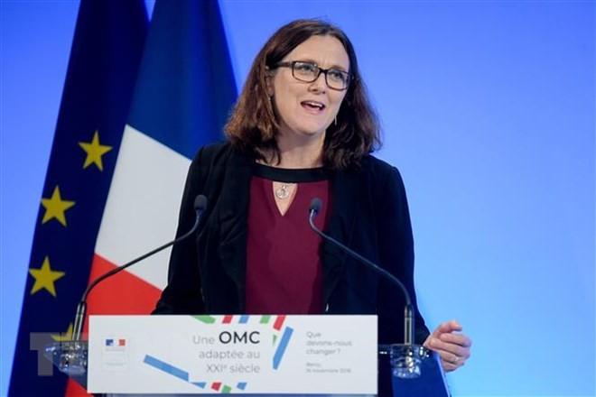 EU、WTO改革協議への参加を米国に要請 - ảnh 1