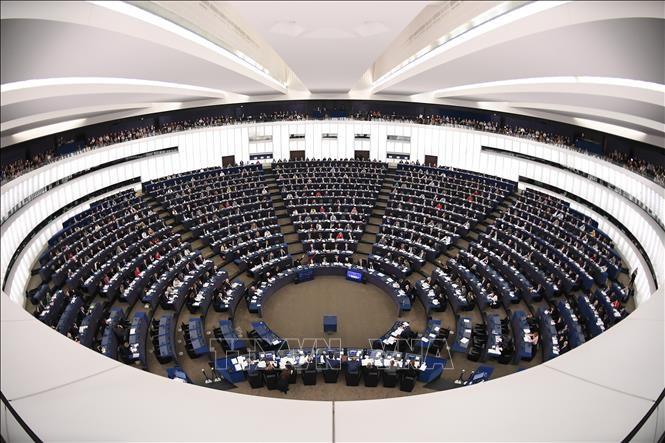 EU、ロシア制裁を半年延長 ウクライナ問題巡り - ảnh 1