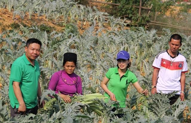 薬用植物の発展に励むシさん   - ảnh 1