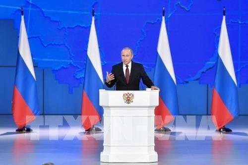 ロシア大統領の年次教書演説をめぐる問題 - ảnh 1
