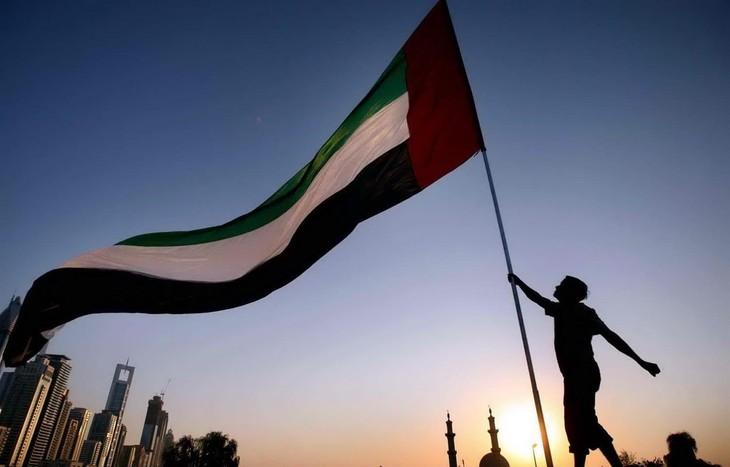 UAEなど租税回避地認定 EU、計15カ国・地域に - ảnh 1