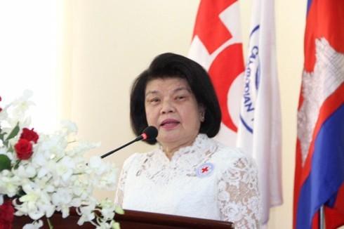 カンボジア議会代表団、ベトナムを訪問 - ảnh 1