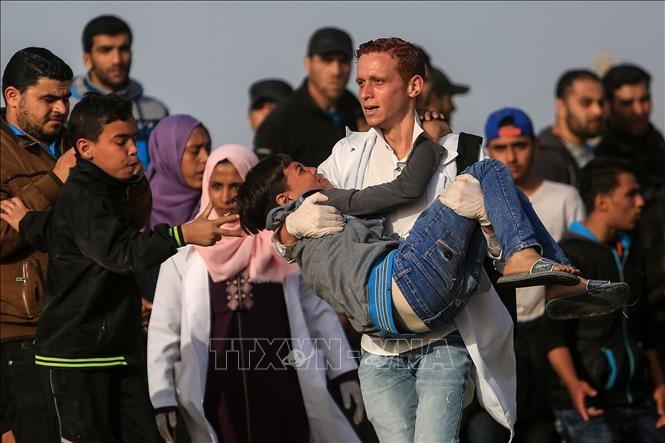 パレスチナ・ガザ地区で、パレスチナ人3人が殉教 - ảnh 1