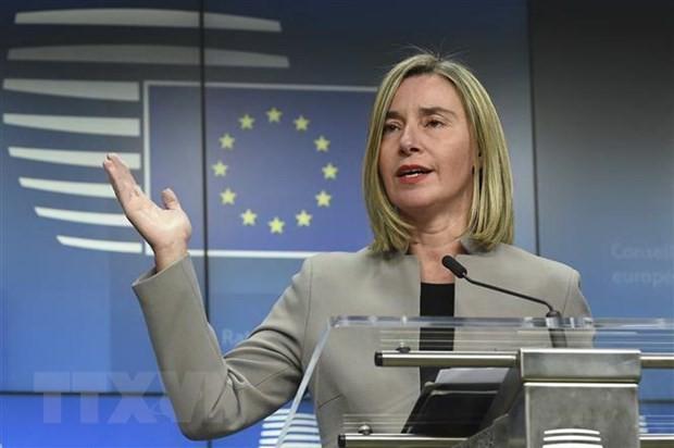 欧州各国外相、軍事的緊張の回避要求=イラン情勢で米国務長官と会談 - ảnh 1