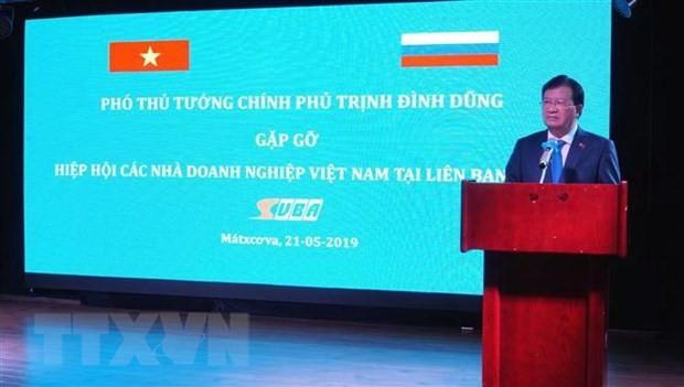 「ロシア年inベトナム」と「ベトナム年inロシア」を展開 - ảnh 1