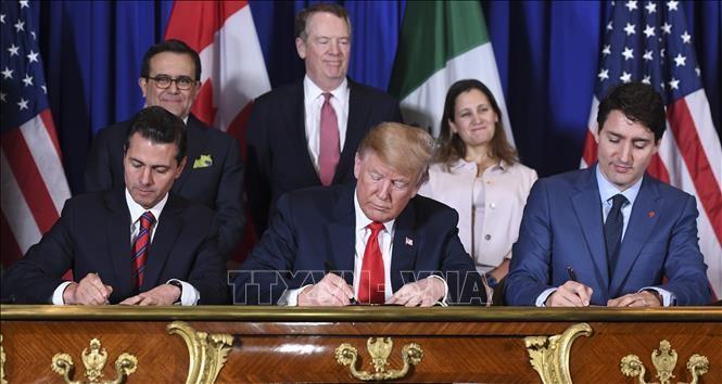カナダ、新NAFTA協定批准に向け法案提出へ=関係筋 - ảnh 1